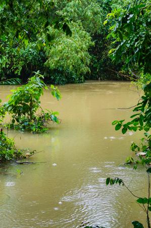 Hoher Wasserstand im Fluss nach dem Regen während der Regenzeit in Vietnam Standard-Bild - 93626400