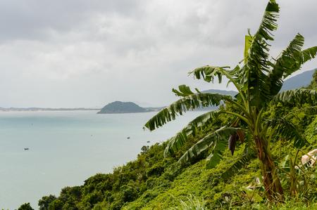 Sea View on island from Viet pass near Da Nang City, Vietnam. Palm tree on front