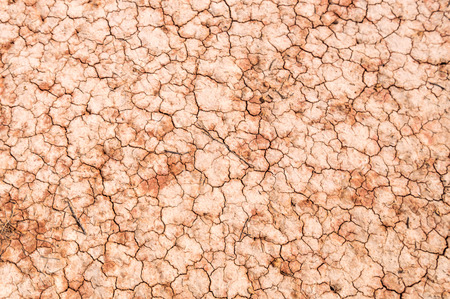 Cracked Ground, Earthquake Background, Texture parched earth Stock Photo