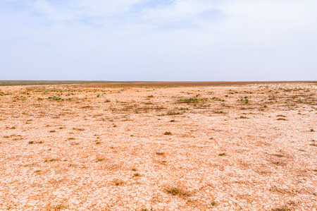 Lake bed drying up due to drought in steppe