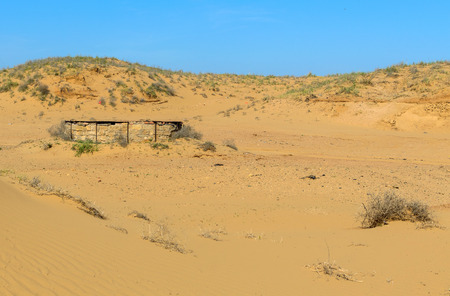 Panorama of the semi-desert with withered grass.