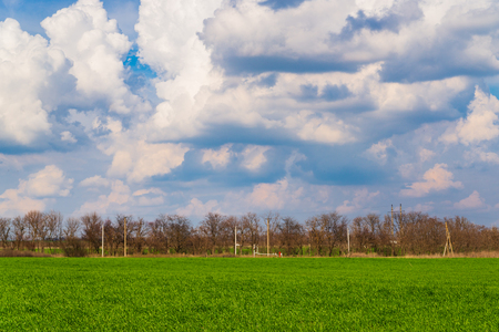 Green field and blue sky with clouds.