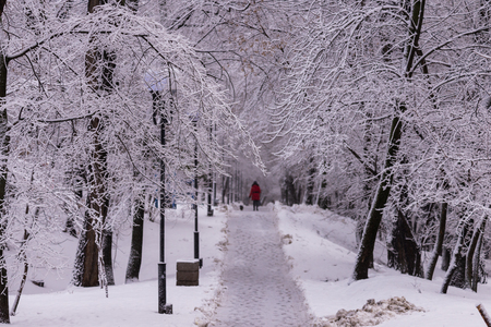 Woman in red with dog on winter alley in park on a snowy day.