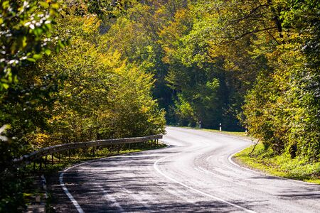 Scenic view of a new road through autumn trees.