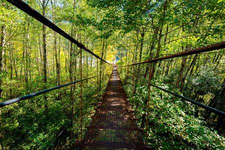Narrow metal foot bridge across forest in autumn. Zdjęcie Seryjne