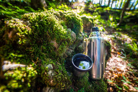 and cup  hot tea. Picnic on mossy log in forest. Leisure concept.