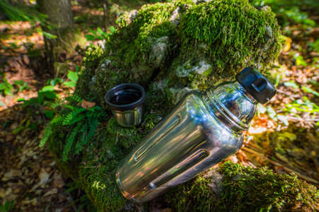 cup  hot tea. Picnic on mossy log in forest. Leisure concept. Standard-Bild