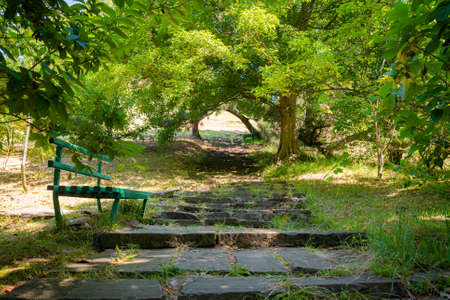 An old stone staircase on the mountain in the park. Near the stairs there are trees and green grass. If you are tired, you can relax on the bench. The concept of Wabi sabi.