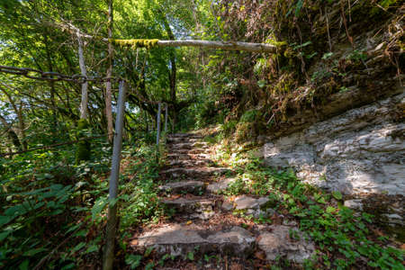 Stone stairs in mysterious forest. Walk path trail for hiking tours. Standard-Bild