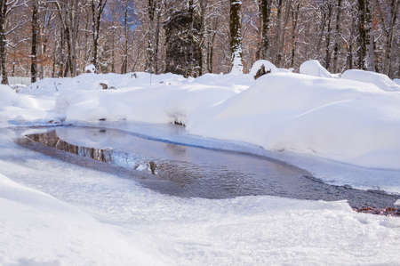 Melting of ice on the river in winter in the forest