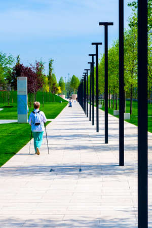 Walking path in a city park with urban lights or lanterns.