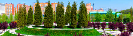 A round place with trees in public park at sunny day in a shady park in summer. Zdjęcie Seryjne