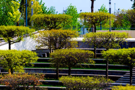 Modern city park with with different trees. Public relax place in big city. Zdjęcie Seryjne