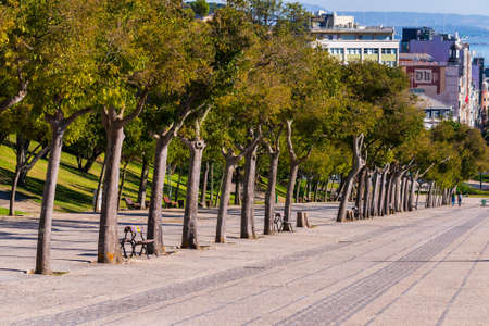 Portugal, Lisbon, October 09, 2018: Walkway with trees at Eduardo VII Park near the Carnation Revolution monument and the Marquess of Pombal Square in Lisbon, Portugal. 新闻类图片