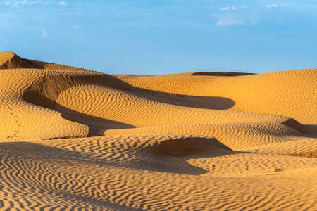 Huge dunes of the desert. Beautiful structures of sandy barkhan or sand-dune. Waves by wind on sand surface.