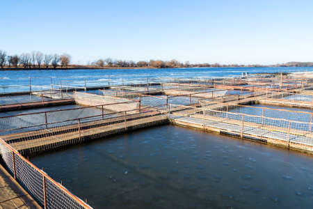Cages for fish farming in the natural river.