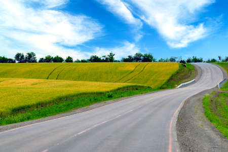 The road along the forest, spring meadows and fields, the countryside.