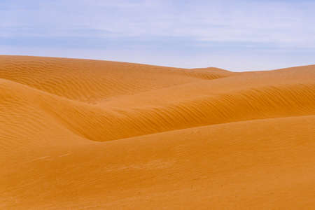 Bend of the ridge of a sand dune in the desert.