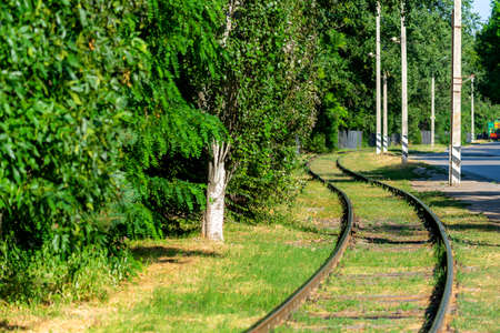 Curvy tram rails surrounded by green grass.
