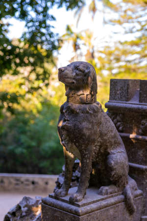 Close Up of stone dog statue among hedges in green garden. Tranquil scene. 版權商用圖片