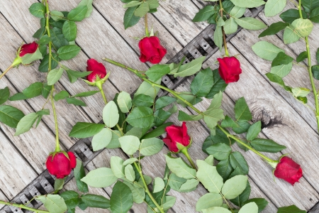 top seven: Scattered red roses on wooden background, top view