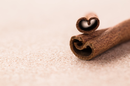 corkwood: Cinnamon sticks on corkwood background. Space for text.