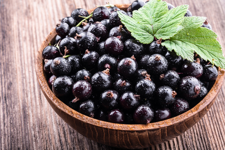 Big wooden bowl with fresh black currant and original leaves on wooden background close-up. Healthy food, harvesting, vitamin, detox, vegan, vegetarian, alternative medicine.
