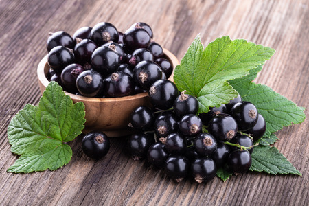 Fresh ripe black currant in wooden bowl with original leaves on rustic old background close-up. Healthy food, harvesting, vitamin