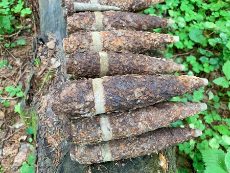 Many old rusty shells bullets of world war 2 found, digged out from the ground in the forest using a metal detector.