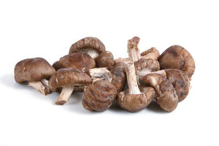 Shiitake Mushrooms isolated on white background Stock Photo