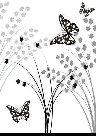 Butterflies vector image.