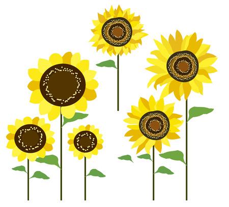 Vector image flowers set