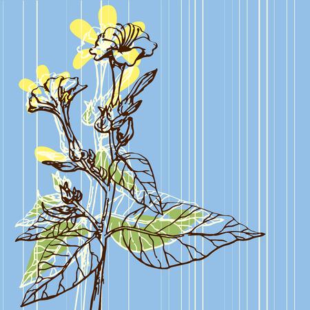 Vector image of vintage background flowers drawing Иллюстрация