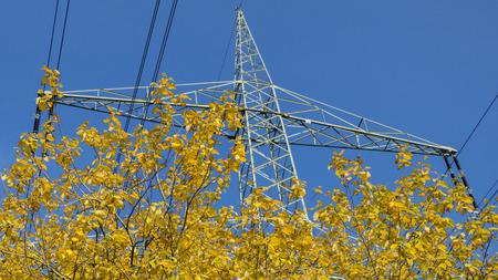 生態学 - 自然とエネルギー - 高電圧 写真素材