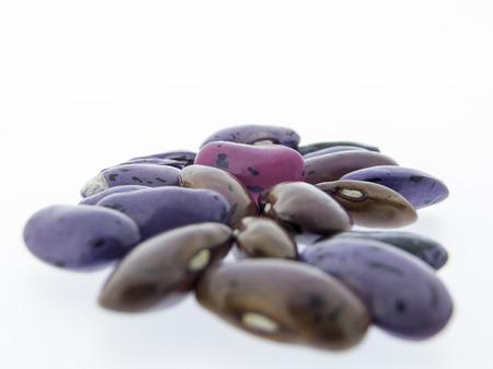 登山豆火に白い背景に、栄養価の高い豆 写真素材