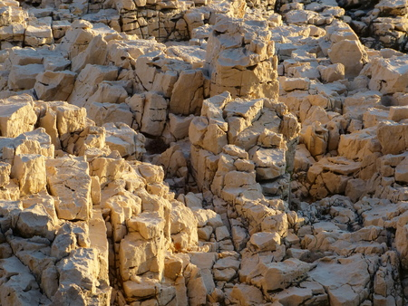 岩や石、日光