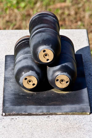 vegatation: Shells for a patriot cannon persevered from the Civil war in the south