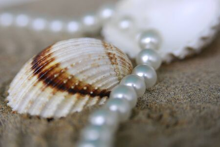 pearl necklace Stock Photo - 10848739