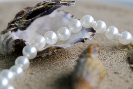 pearls Stock Photo - 10889707