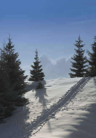 h�tte schnee: Schneeberg 07
