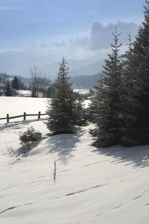 h�tte schnee: Schneeberg 08