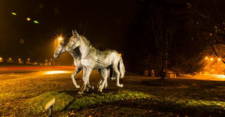 royals: Royals favorite horses