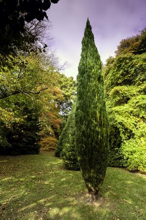 English autumn  West Sussex, United Kingdom