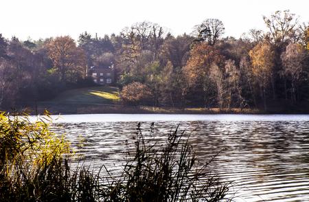 English autumn - Virginia Water, United Kingdom 免版税图像 - 100144741