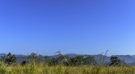 Sunny autumn morning at Jim Corbett National Park, India