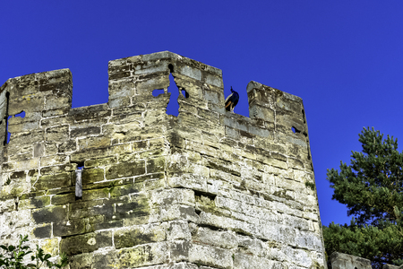 Warwick Castle - Bear Tower with peacock guard in Warwick in Warwick, Warwickshire, United Kingdom