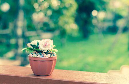 color tone: rose decoration, vintage color tone Stock Photo