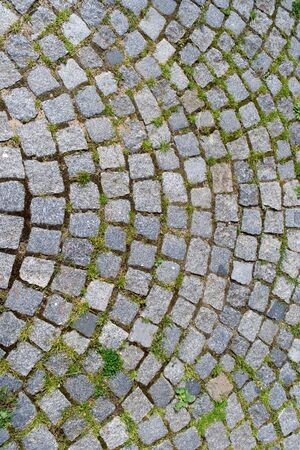 cobblestone street: Detail of stone block paving with green grass