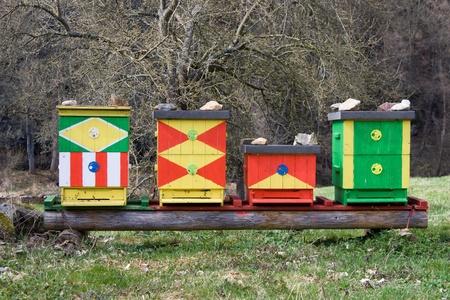 Quattro alveari colorati nella natura Archivio Fotografico - 10060156