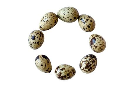 huevos de codorniz: Huevos de codorniz en el círculo sobre fondo blanco Foto de archivo